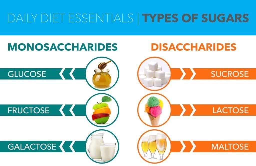 Glucose And Fructose Make