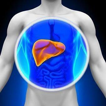 Liver Blood Tests (normal, Low, And High Ranges & Results