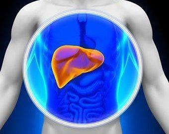 Can diabetes cause elevated liver enzymes?
