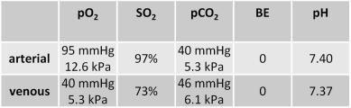 Basics | Blood Gas Analysis
