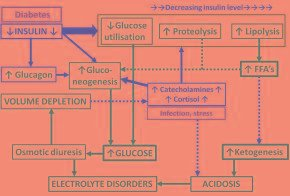 Why Does Metabolic Acidosis Cause Abdominal Pain