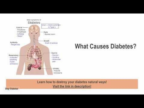 What Are The Reasons For The Increase In The Rate Of Childhood Diabetes?