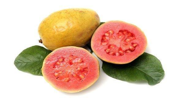 Guava Leaves Water For Diabetes