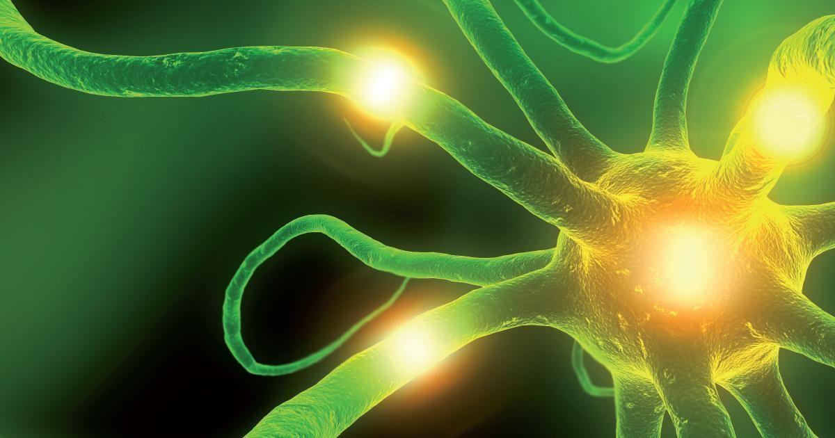 Ketogenic Diet Epilepsy Pubmed