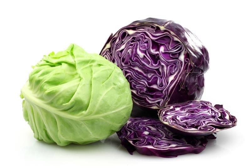 Cabbage And Type 2 Diabetes
