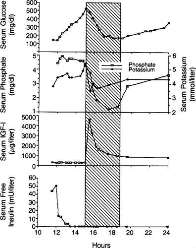 Treatment Of Insulin-resistant Diabetic Ketoacidosis With Insulin-like Growth Factor I In An Adolescent With Insulin-dependent Diabetes