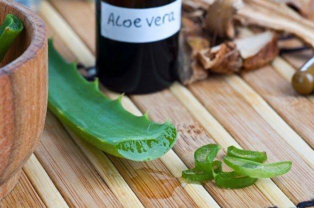 Cmo Usar El Aloe Vera Para Curar La Dibetes Imperdible!