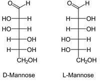 Difference Between Glucose And Mannose