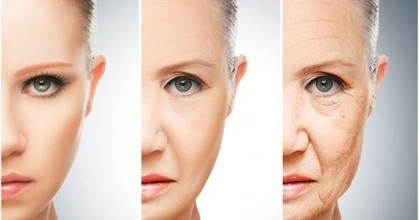 Two Compounds Revealed To Slow Age-induced Degeneration