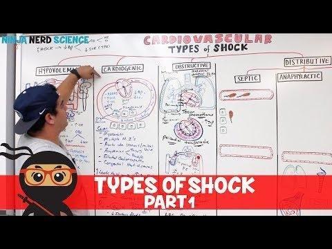 Hypovolemic Shock Pathophysiology, Symptoms, Signs, Treatment | Ehealthstar