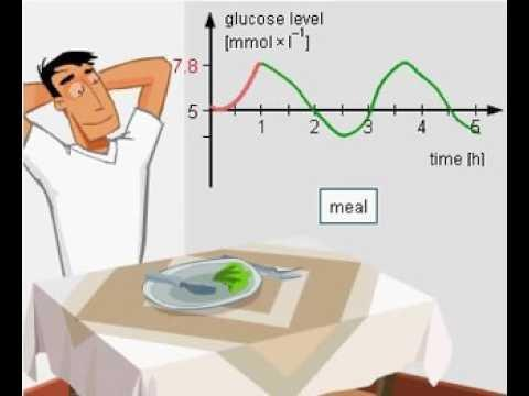 After Meal Glucose