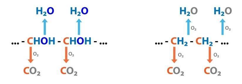 7. Acid-base Balance