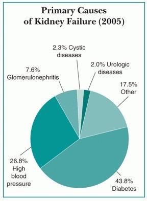 Kidney Disease Of Diabetes