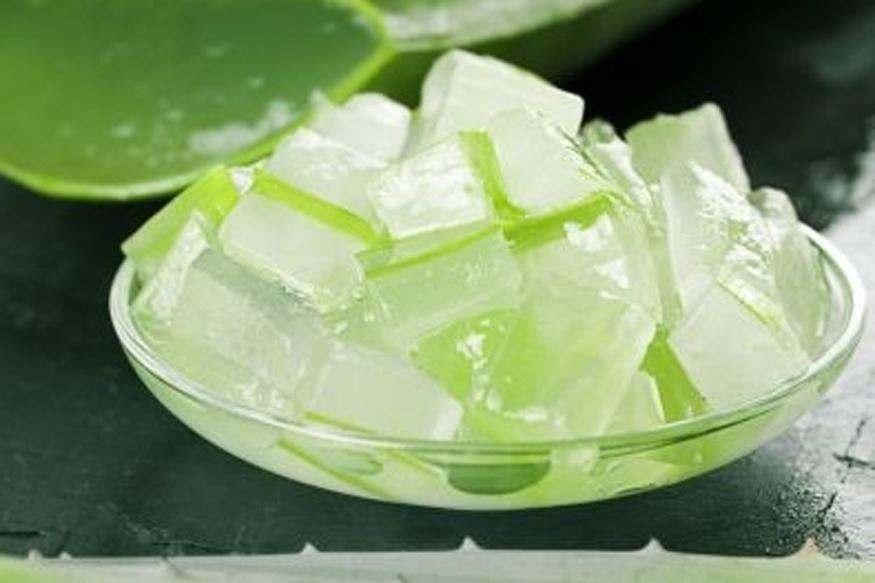 Aloe Vera May Have Beneficial Effects For Diabetics