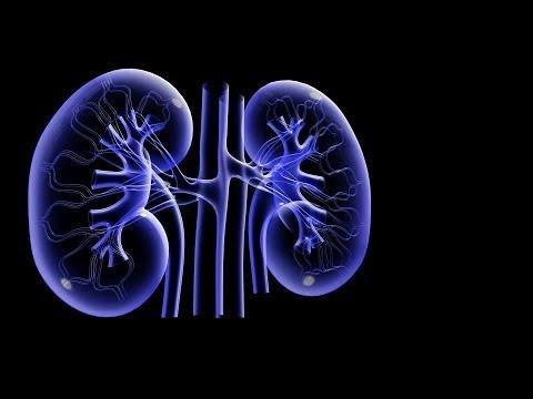 Diabetes And Dialysis Life Expectancy
