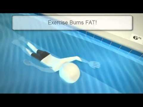 How Does Exercise Reduce The Risk Of Type 2 Diabetes?