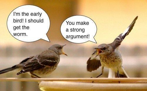 The Secrets Of A Strong Argumentative Essay