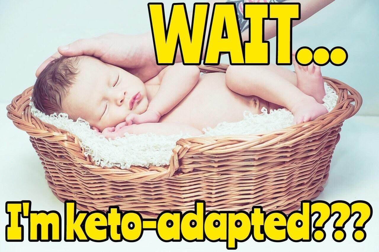 Ketogenic Diet Myth #1: Are Babies In Ketosis? Findings & Implications
