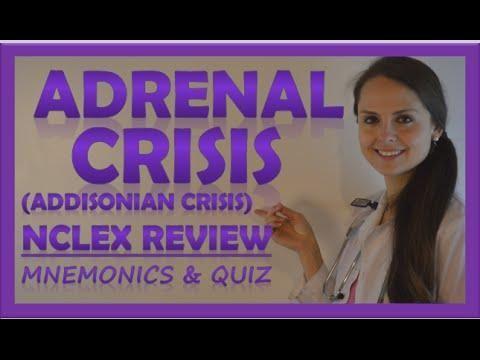 Endocrine Disorders Of Pregnancy: Gestational Diabetes Mellitus, Diabetic Ketoacidosis In Pregnancy, Acute Adrenal Crisis In Pregnancy, Cushing's Syndrome In Pregnancy, Hypothyroidism In Pregnancy