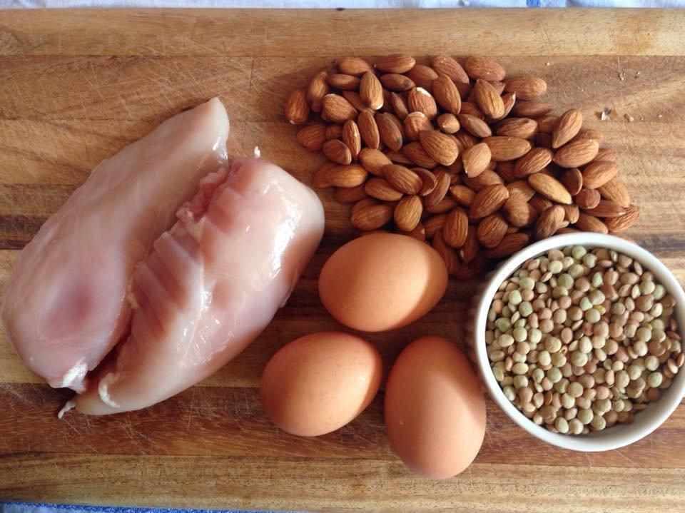 Too Much Protein Harms A Ketogenic Diet