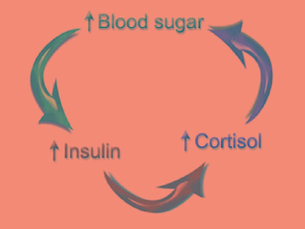 Insulin Resistance And Hypoglycemia In Fitness.