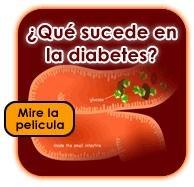 El Control De La Diabetes: Por Qu Es Importante