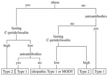 Clinical Features Of Diabetes Mellitus Type 1