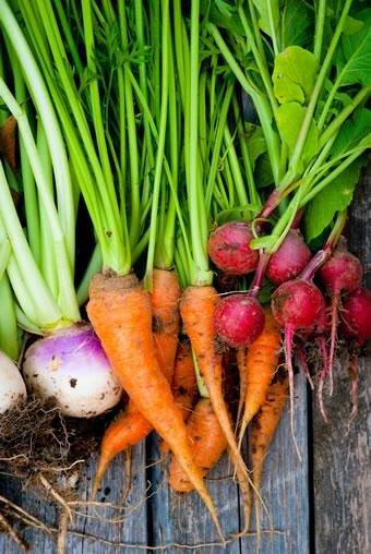 Root Veggies, Not Other Produce, Cut Diabetes Risk
