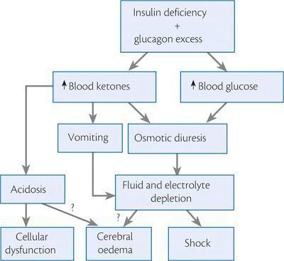 Ketoacidosis Pathophysiology