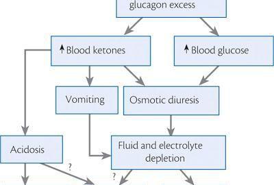 Dka Pathophysiology