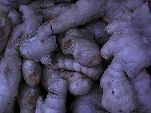 Ginger could manage diabetes.
