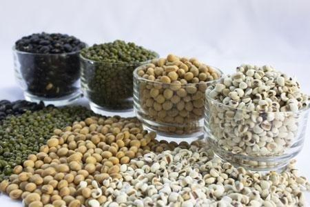 Millets Can Work Magic On Diabetes: Study