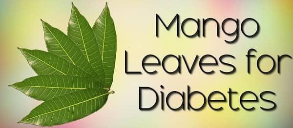 Leaves For Diabetes