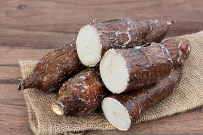 Health Benefits Of Yucca Roots