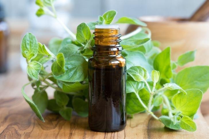 Oil Of Oregano And Diabetes
