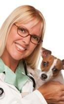 How Much Does It Cost To Give A Dog Insulin?