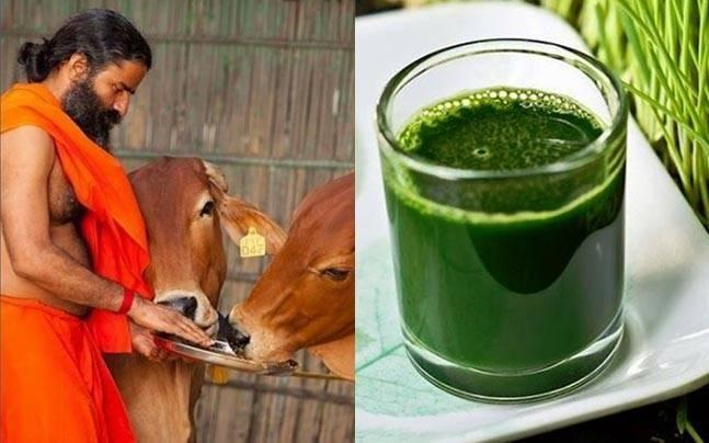 7 Superfoods By Baba Ramdev That Will Keep All Kinds Of Fevers Away
