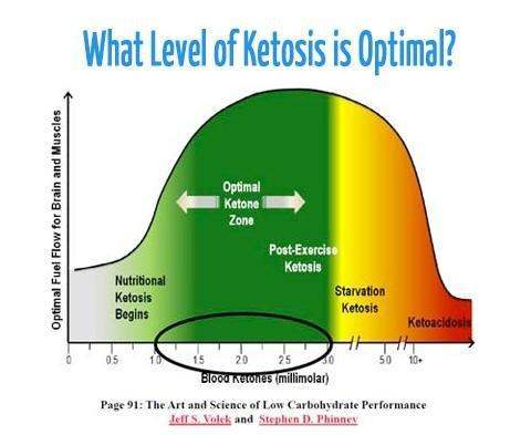 The Ketogenic Diet For Fat Loss & Much More