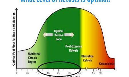Ketosis Urine Color