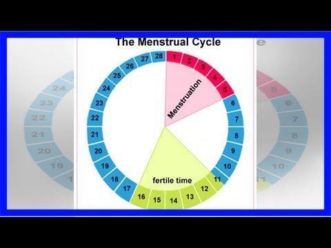 Metformin Ovulation Calculator