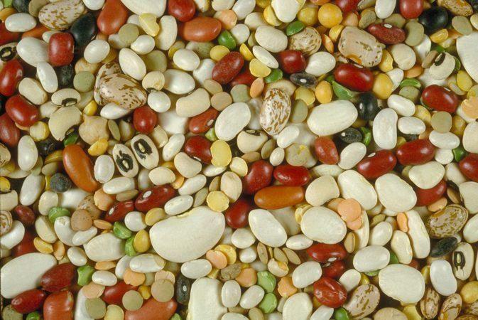 Beans & Blood Sugar