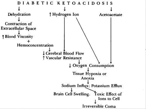 Cerebral Edema With Irreversible Coma In Severe Diabetic Ketoacidosis