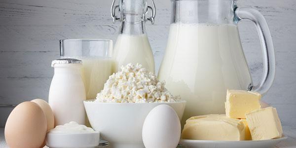 Full Fat Dairy Diabetes