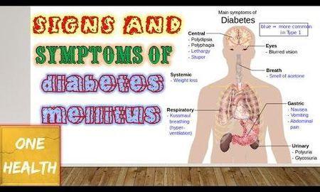 Why Does Diabetes Mellitus Happen?