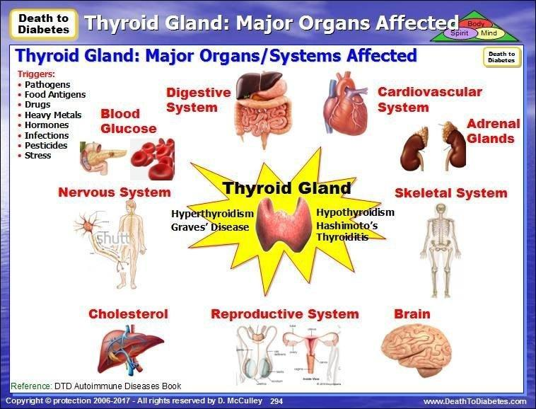 Is Diabetes And Thyroid Connected?