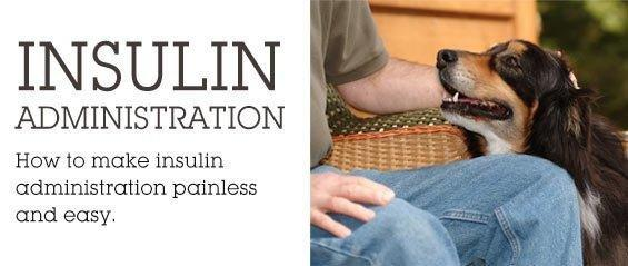 Diabetes, Insulin Administration Tips