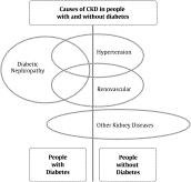 What Causes Kidney Failure In Diabetic Patients?
