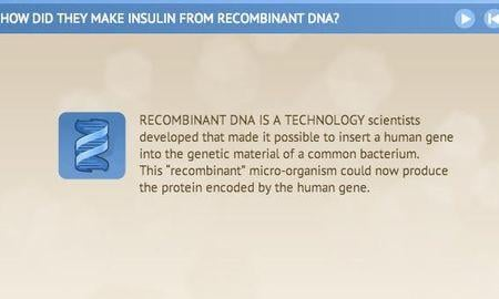 How Is Insulin Produced