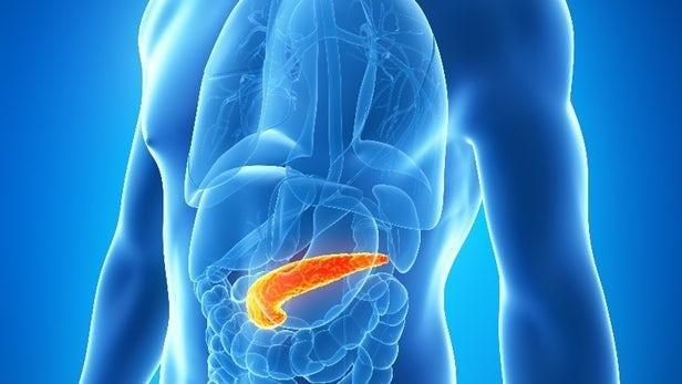 How To Lose 1 Gram Of Fat From Pancreas