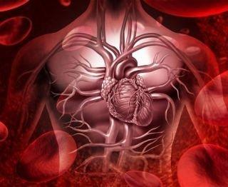 High Blood Pressure And Diabetes Linked To Cognitive Decline